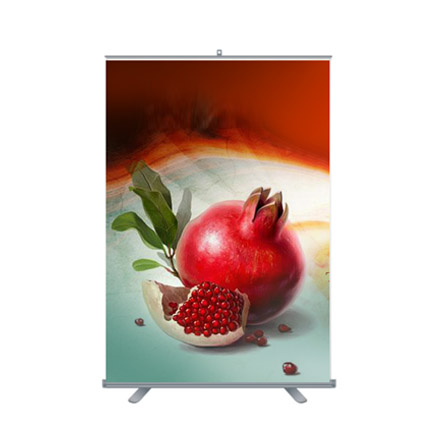 Pr Roll-up standart 150