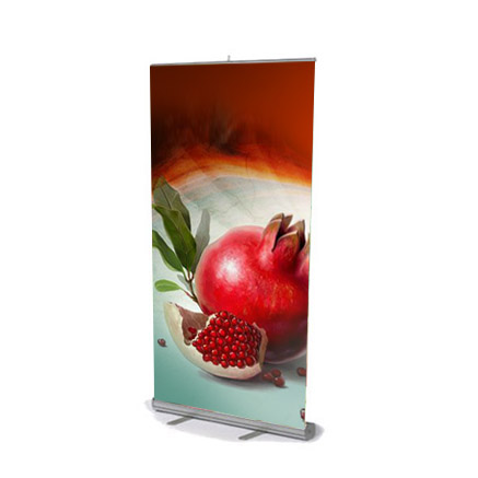 Pr Roll-up standart 80